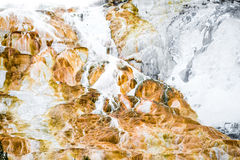 Fundo da textura da rocha do vulcão - yellowston de Mammoth Hot Springs Foto de Stock Royalty Free