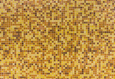 Fundo da textura da telha na parede Foto de Stock