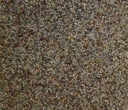 Fundo da textura das sementes de papoila Imagens de Stock Royalty Free