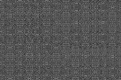 Fundo da textura de alta resolução da parede de tijolo no preto e no wh Imagens de Stock