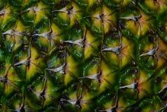 Fundo da textura do abacaxi Imagens de Stock Royalty Free