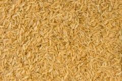 Fundo da textura do arroz integral nutrition bio Ingrediente de alimento natural imagens de stock royalty free