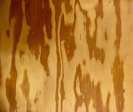 Fundo da textura do assoalho da madeira compensada foto de stock royalty free