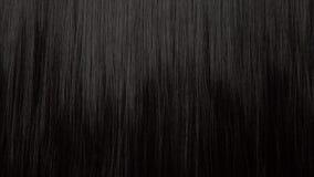 Fundo da textura do cabelo, nenhuma pessoa vídeos de arquivo