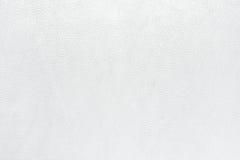 Fundo da textura do couro de Whtie foto de stock