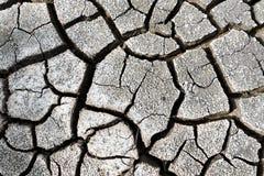 Fundo da textura do solo seco Imagem de Stock