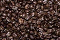 Fundo da textura dos feijões de Coffe Fotos de Stock Royalty Free