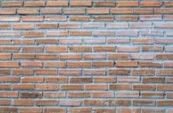 Fundo da textura da parede de tijolo foto de stock royalty free