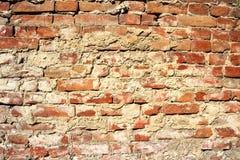Fundo da textura da parede de tijolo vermelho Imagem de Stock