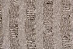 Fundo da textura da tela Imagem de Stock