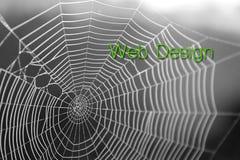 Fundo da tipografia da rotulação do projeto gráfico de Web de aranha fotografia de stock