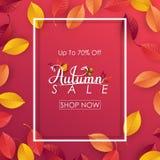 Fundo da venda do outono com folhas de queda Fotos de Stock Royalty Free