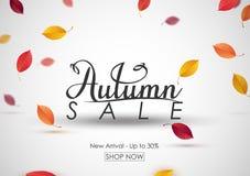 Fundo da venda do outono com folhas de queda Imagens de Stock