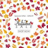 Fundo da venda do outono com folhas de queda Imagem de Stock
