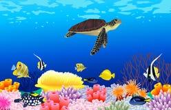 Fundo da vida de mar Imagem de Stock Royalty Free