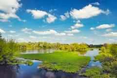 Fundo das águas da inundação do rio, Narew, Poland Imagens de Stock Royalty Free