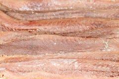 Fundo das anchovas Imagem de Stock Royalty Free