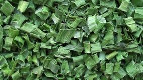 Fundo das cebolas verdes secadas, especiarias perto acima do giro vídeos de arquivo