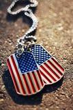 Fundo das etiquetas de cão da bandeira americana Imagem de Stock Royalty Free
