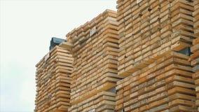 Fundo das extremidades quadradas das barras de madeira Material de construção de madeira da madeira para o fundo e a textura Fim  fotografia de stock royalty free