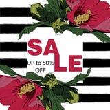 Fundo das férias de verão com flores tropicais Vetor do molde Fotos de Stock Royalty Free