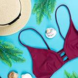 Fundo das férias de verão Conceito tropical do verão com biquini, as folhas e as conchas do mar vermelhos no fundo azul Fotos de Stock Royalty Free