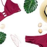 Fundo das férias de verão Conceito tropical do verão com biquini, as folhas e as conchas do mar vermelhos no fundo azul Fotografia de Stock Royalty Free
