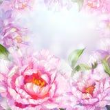 Fundo das flores das peônias. ilustração royalty free