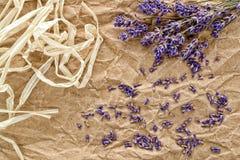 Fundo das flores e das sementes da alfazema imagem de stock