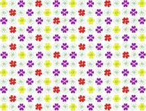 Fundo das flores violetas, do vermelho e do amarelo Imagem de Stock