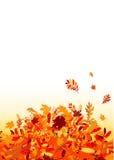 Fundo das folhas de outono para seu projeto ilustração stock