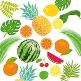 Fundo das frutas frescas Foto de Stock Royalty Free