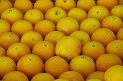 Fundo das laranjas Fotografia de Stock