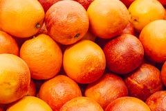 Fundo das laranjas pigmentadas Fundo alaranjado siciliano vermelho foto de stock royalty free