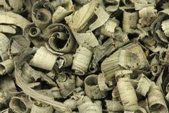 Fundo das microplaquetas de madeira de carvalho do pântano Imagens de Stock Royalty Free