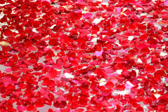 Fundo das rosas Fotos de Stock