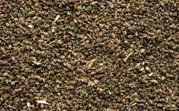 Fundo das sementes de aipo Foto de Stock Royalty Free