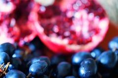 Fundo das uvas do vinho tinto do close-up fotografia de stock royalty free