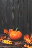 Fundo de Autumn Fall com abóboras e as folhas douradas na oxidação Fotografia de Stock Royalty Free