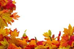 Fundo de Autumn Leaves e das abóboras Foto de Stock Royalty Free