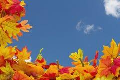 Fundo de Autumn Leaves e das abóboras Imagens de Stock Royalty Free