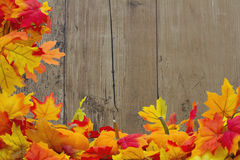 Fundo de Autumn Leaves e das abóboras Fotografia de Stock Royalty Free