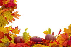 Fundo de Autumn Leaves e das maçãs Fotos de Stock