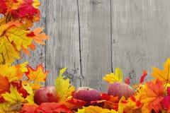 Fundo de Autumn Leaves e das maçãs Imagens de Stock Royalty Free