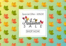 Fundo de Autumn Sale com folhas Fotografia de Stock