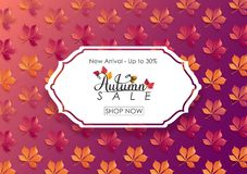 Fundo de Autumn Sale com folhas Fotos de Stock