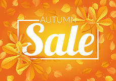 Fundo de Autumn Sale com folhas Foto de Stock Royalty Free