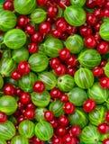 Fundo de bagas e de frutos diferentes Imagem de Stock Royalty Free