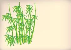 Fundo de bambu Ilustração Stock
