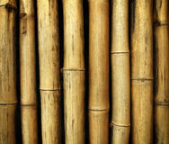 Fundo de bambu foto de stock royalty free